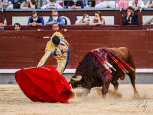 MADRID 10